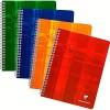 Clairefontaine MAXI 87244C Spiralgebundenes Notizbuch A5 im Quadrat 4 x 4 100 Seiten farblich sortiert 1 Buch